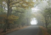 foggy drive image from Warranty Direct