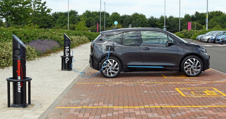 Electric car market flat due to long waiting times