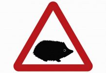 Hedgehog road sign | The Car Expert